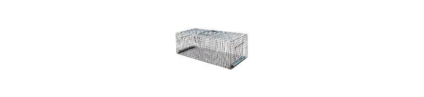 Cage pigeon : pour votre volière ou pour capturer des pigeons